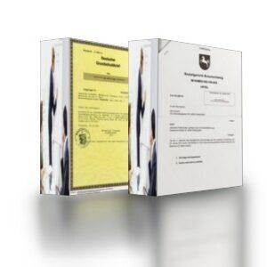 vollstreckbare Schuldtitel mit brieflosem Grundschuldbrief